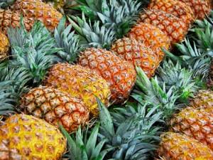 culture ananas