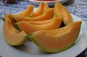 melon culture
