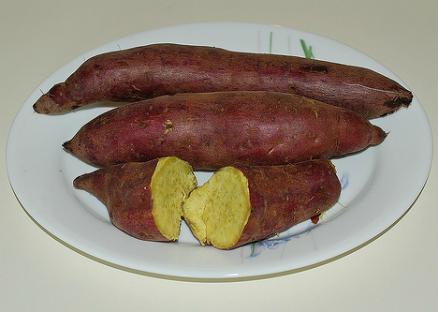 patate douce culture de la patate douce jardinage bio. Black Bedroom Furniture Sets. Home Design Ideas