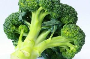 culture du brocoli